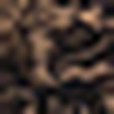 Черные кружевные трусы из микрофибры Generous Essential, , DIM