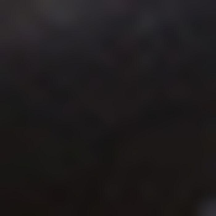Culotte Noire en dentelle pour femme Mod de Dim, , DIM