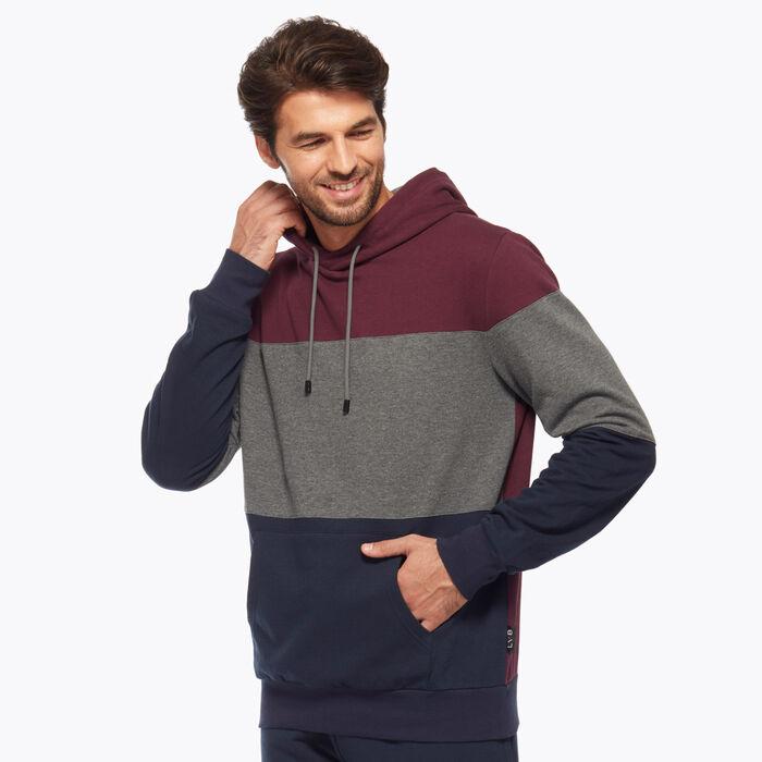 Navy blue, Burgundy and Grey Men's Sweater, , DIM