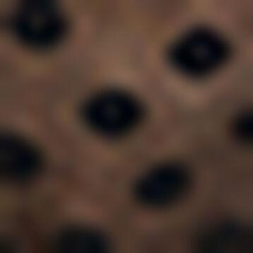 Black laced triangle bra with polka dots Dotty Line, , DIM