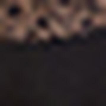 Women's black full cup lace bandeau Sublim Dentelle , , DIM