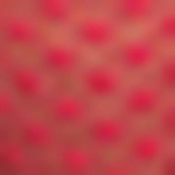Vibrant Pink women's polka dot mesh thong Dotty Mesh Panty Box, , DIM