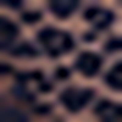 Infinite Blue laced and printed bra Leopard Line, , DIM