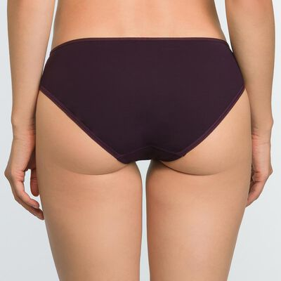 Precious Purple Microfiber and Mesh Briefs Generous, , DIM