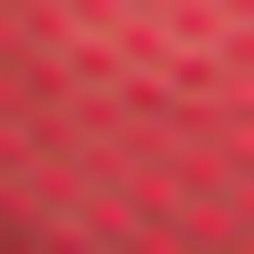 Shorty en tulle et à pois Rouge Casual pour femme Dotty Mesh, , DIM