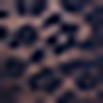 Infinite Blue laced and printed brief Leopard Line, , DIM